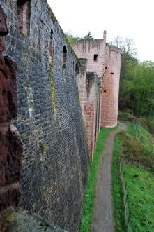 Kurpfalz 29
