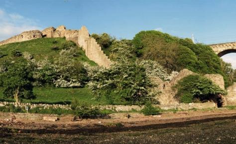 Burgen 33