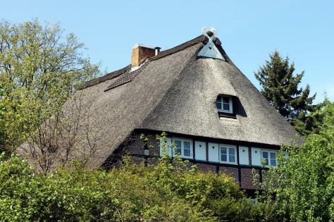 Wilstorf 01