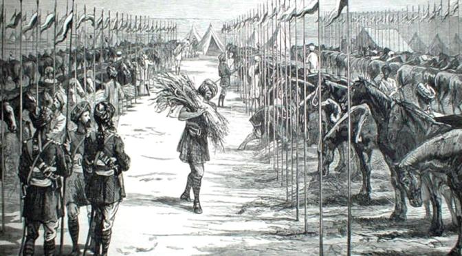 Das indische Kontingent im Ost-Sudan / 1885